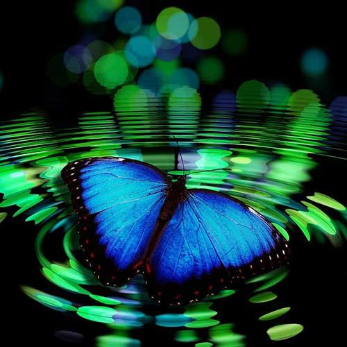 colorado-springs-alternative-medicine-healing-manitou-wellness-spiritual-wellness