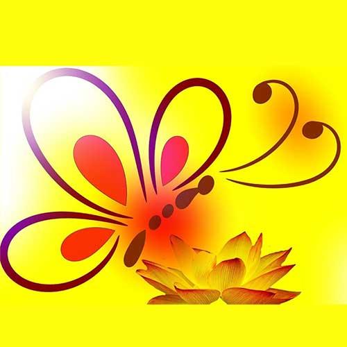 colorado-springs-herbalism-herbs-herbal-remedies-manitou-wellness