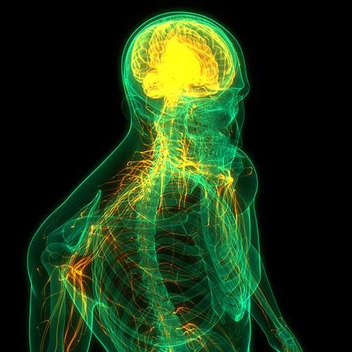manitou-wellness-center-colorado-springs-craniosacral-therapy-therapy